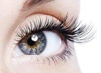 3 lashes